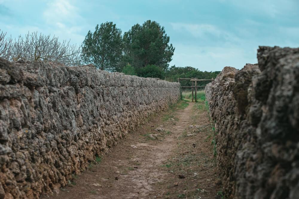 Mallorca-SAlbufereta-Naturpark-14