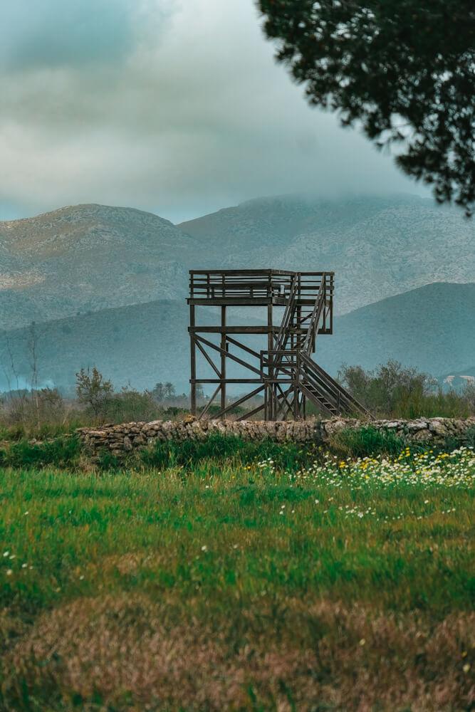 Mallorca-SAlbufereta-Naturpark-15