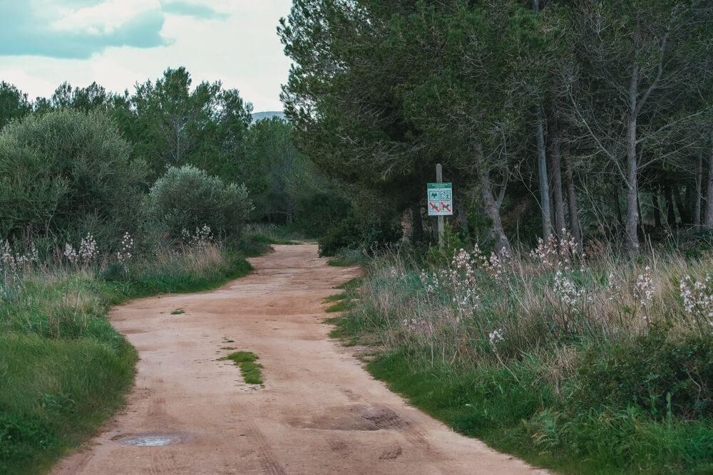 Mallorca-SAlbufereta-Naturpark-5