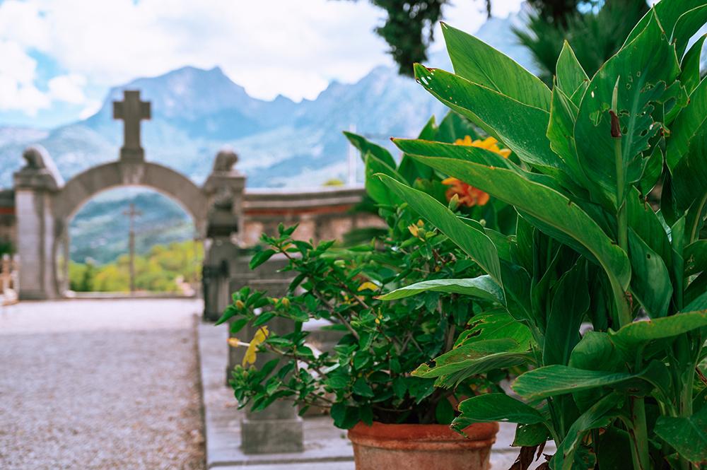 Mallorca-Friedhof-Soller-13
