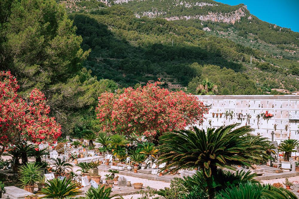 Mallorca-Friedhof-Soller-4