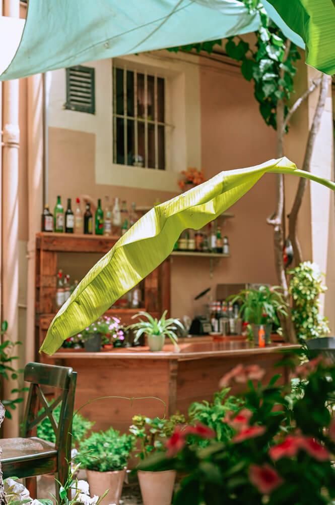 Mallorca-Palma-Vegan-Restaurant-Temple-Natura-Cafe-Garden-1